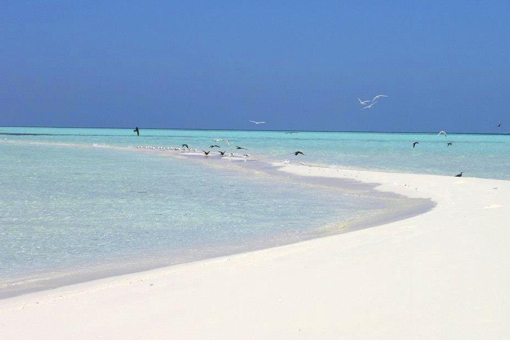 Visitar Islas desiertas