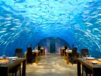 Restaurantes bajo el mar