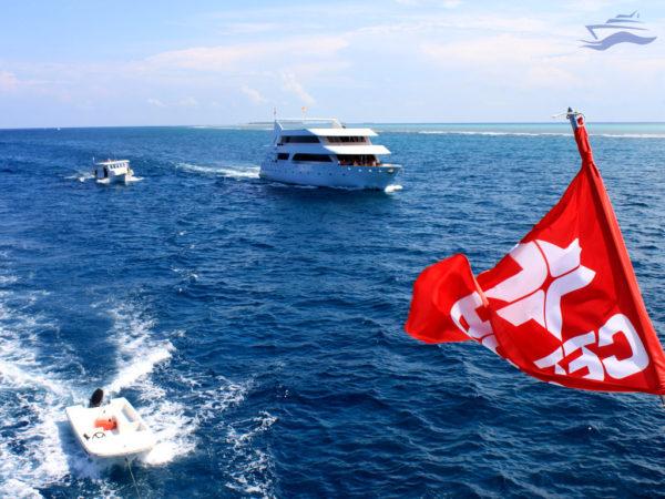 Viaje para empresas. Yates navegando juntos